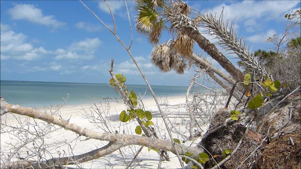 Where To Retire In Florida moreover Dr Beach Names 4 Florida Beaches Among Best Nation likewise Map Of Cape Coral Florida likewise Attraction Review G34091 D531892 Reviews Bonita Springs Public Beach Bonita Springs Florida furthermore barefootweddings. on barefoot beach bonita springs florida