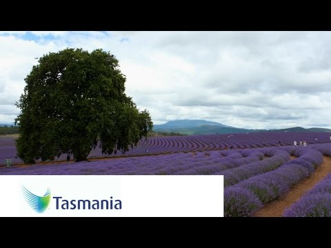 Tasmania, Australia