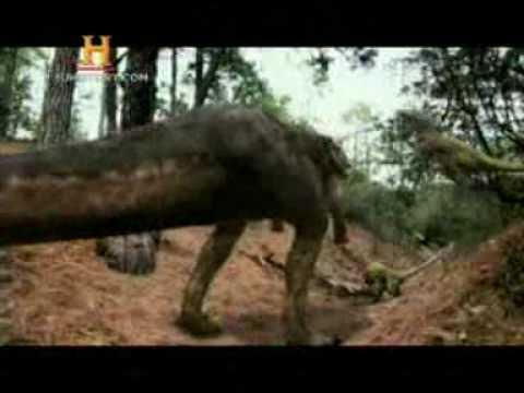 Mundo Jur�sico: Raptores Vs Tiranosaurio: Parte 5 de 5