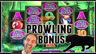 🎉🙀 Prowling Panther BONUS 🐈 + Many MORE! ✦ Slot Machine Pokies w Brian Christopher