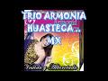 ARMONIA huasteca.mix..