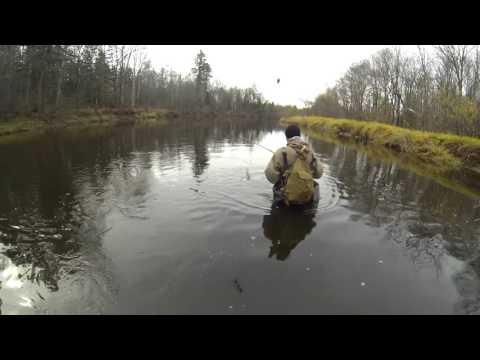 рыбалка на реках хабаровского края 2015 видео
