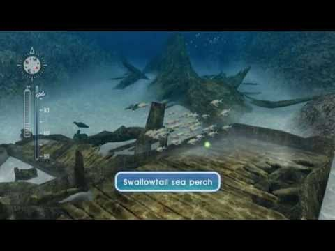 Let's Play Endless Ocean: Blue World, Episode 4: Another Fact About A Hammerhead
