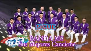 Banda MS Sigue 2013