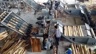 máy bóc gỗ tự động  0966.673.899 & 0977.263.114