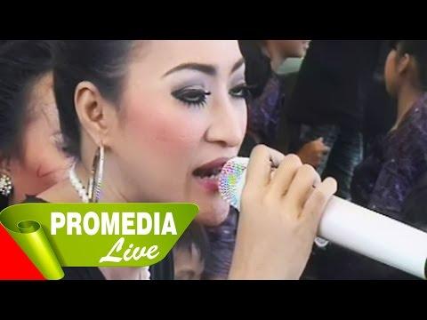media video ngintip pengantin baru lagi ml