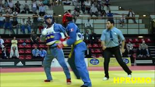 Vovinam Viet Vo Dao Mix (This is the Vietnamese Martial Art) in HD