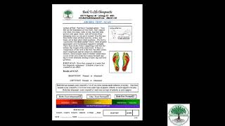 Back to Life System Health Score Arches Category