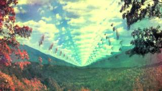 Watch Tame Impala I Dont Really Mind video