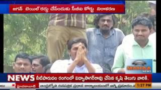 సిబిఐ షాక్,జగన్ కోసం అభిమానులు|Mahaa News Focus On YS Jagan Bail Cancellation Petition