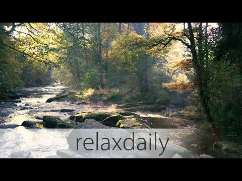 Calm and Slow Music with Fall Nature Footage - N°010 (4K)