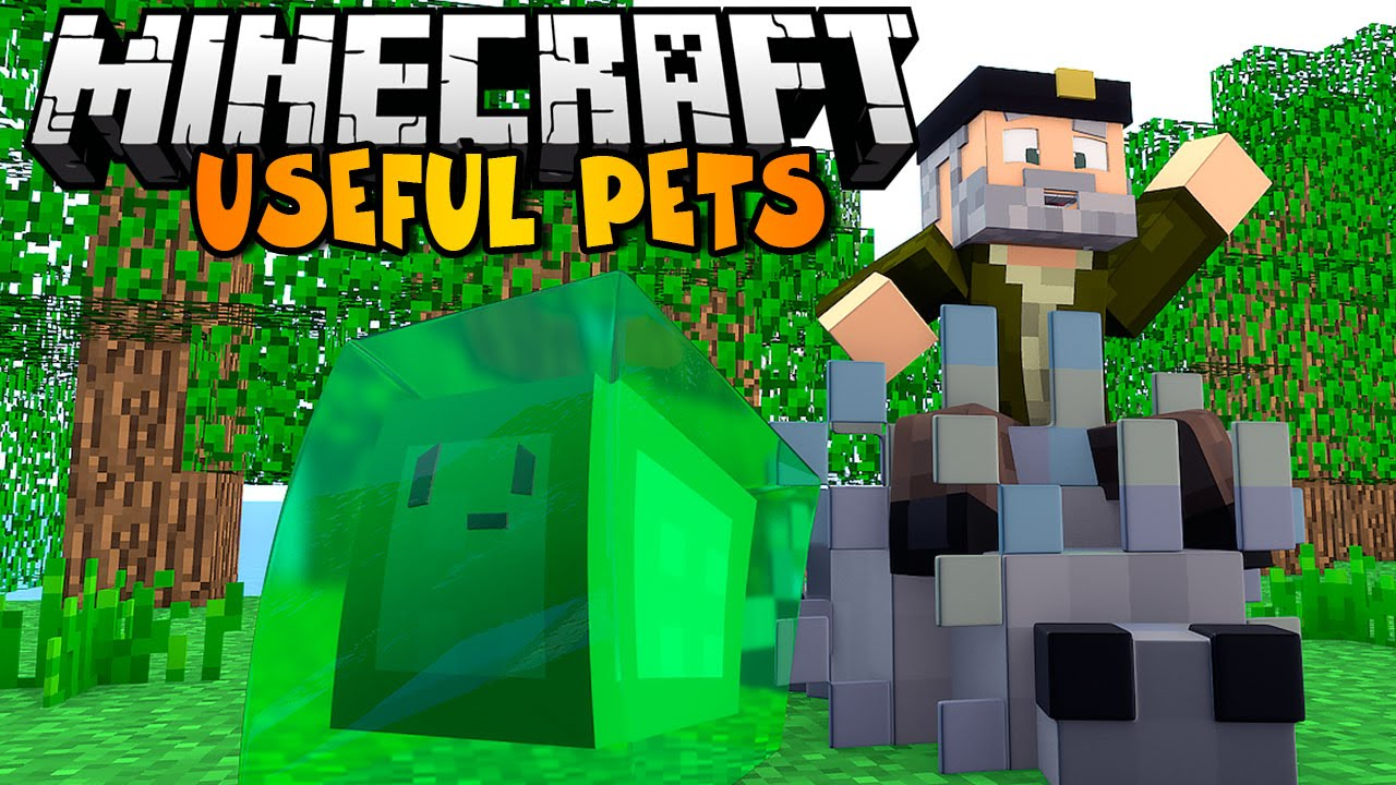 Useful Pets Mod Review