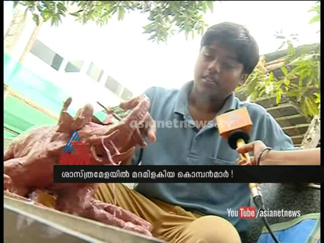 Making of mad elephant Clay modeling innovation Kerala state science festival 2014