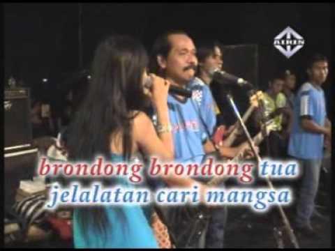 Berondong Tua Reza Lawang Sewu Pantura Live Music video