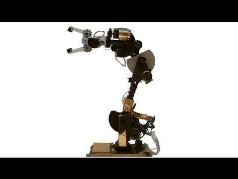 Homemade Robotic Arm