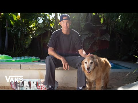Welcome to The Vans Family - Andrew Reynolds