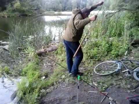 ловля сома на реке воронеже