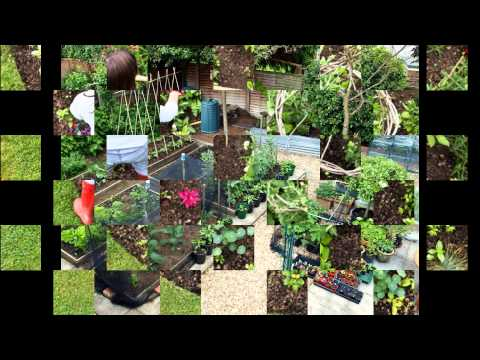 organic pest control for home and garden. beautiful ideas. Home Design Ideas
