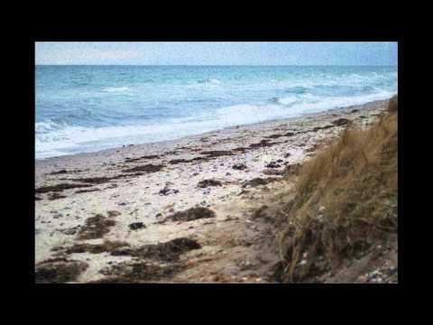 Harmonijka Wyjeżdza Nad Morze, Czyli Morskie Opowieści