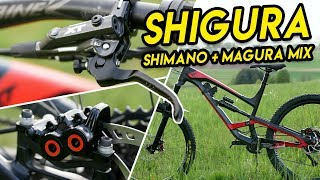 Shigura Brake Upgrade | Shimano XT + Magura MT5/7 - Bike Build MTB
