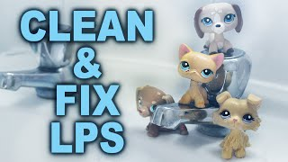 How to LPS Cleaning & Fixing Broken Littlest Pet Shop | Alice LPS