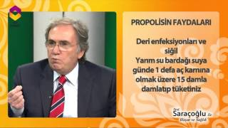 Prof Saraçoğlu'ndan Propolisin Faydaları