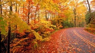 Mensagem de Outono