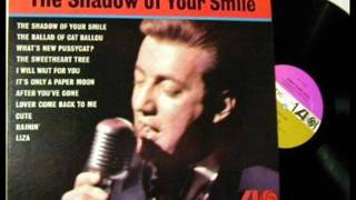 Watch Bobby Darin The Shadow Of Your Smile video