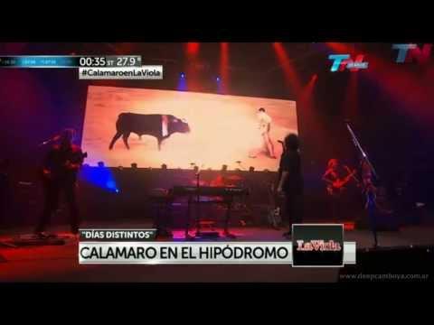 Dias distintos - Hipódromo Palermo 2013 - Andres Calamaro