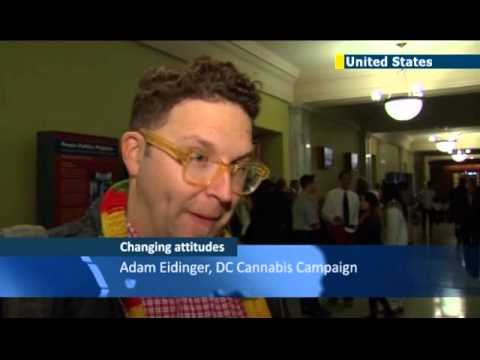 Washington DC Joins Marijuana Bandwagon: US capital votes for cannabis decriminalisation