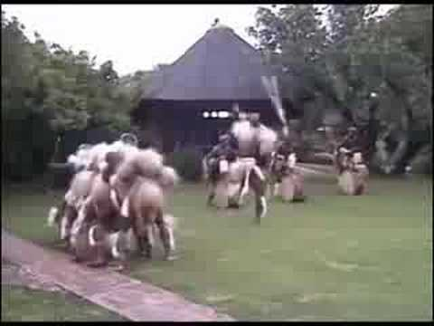 Zulu Warrior Dancers