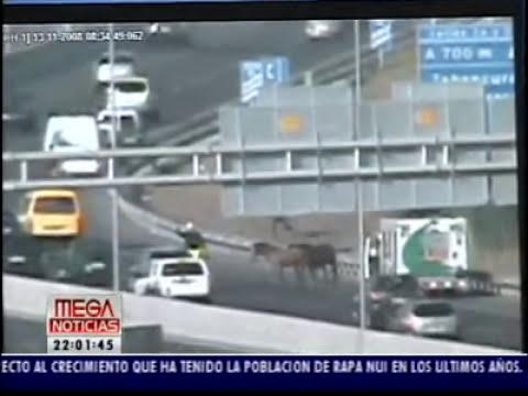 Accidentes de Transito en Autopistas Santiago de Chile. Imágenes Exclusivas.