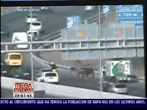 Accidentes de Transito en Autopistas Santiago de Chile. Imágenes Exclusivas.