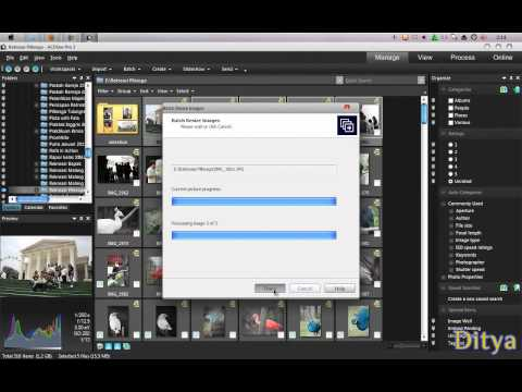 How to Resize Picture using ACDsee pro3.wmv
