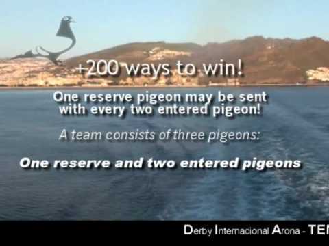 Maritime-1 Race Derby Internacional Arona-TENERIFE Pigeon Race Part 2/3
