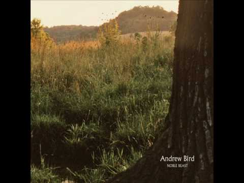 Andrew Bird - Effigy