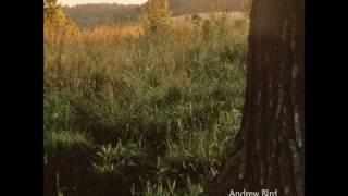 Watch Andrew Bird Effigy video