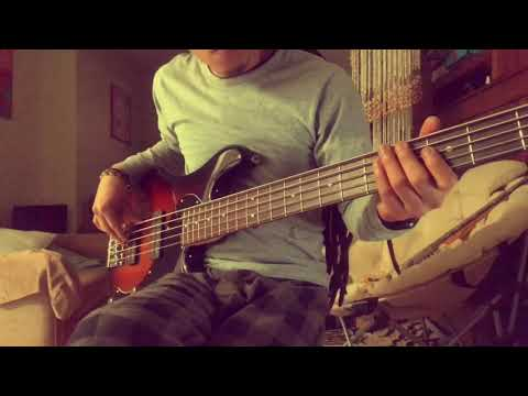 amber 311 bass cover