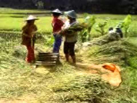 Orang Desa Tukang Ngaret.3gp