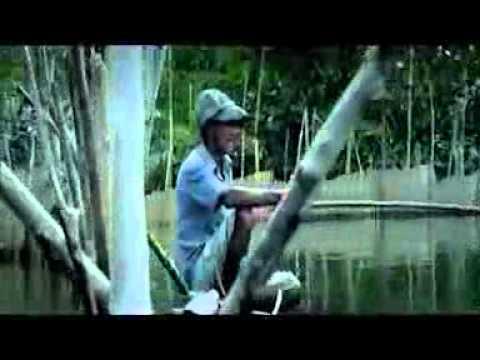 Jacqueline Fernandez.3gp video