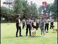 Melatih k-9 untuk Bantu Tugas Polisi Part 03 - Intermezzo 14/07