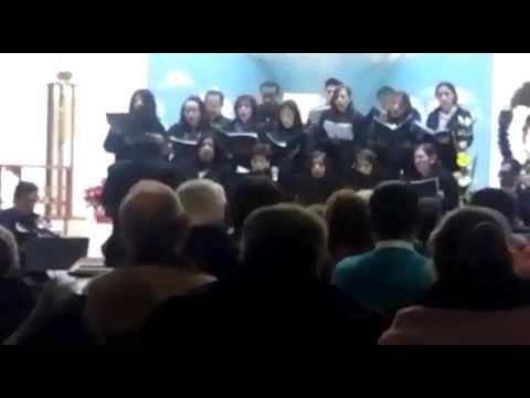 Coro catedral tulancingo. Canticorum