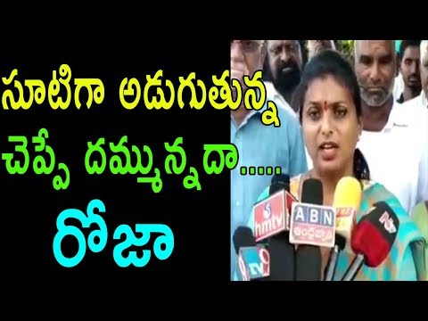 YSRCP Mla Roja Comments On  TDP Govt Mukhyamantri Yuva Nestam Scheme | Meeting | Cinema Politics