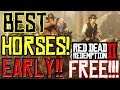 BEST HORSES EARLY In Red Dead Redemption 2 Early Location mp3