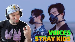 "Download Lagu MUSICIAN REACTS | Stray Kids ""Voices""| JG-REVIEWS:K-POP Gratis STAFABAND"