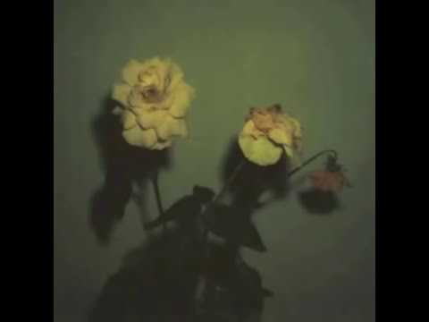 Blu & Exile - Give Me My Flowers While I Can Smell Them