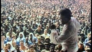Soul Survivor - The James Brown Story