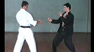 Jeet Kune Do: Parry and Attack