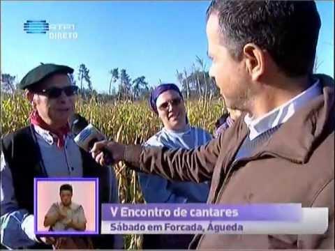 Reportagem RTP Pra�a da Alegria 03/10/12 - Forcada - Aguada de Cima - �gueda - Parte 1