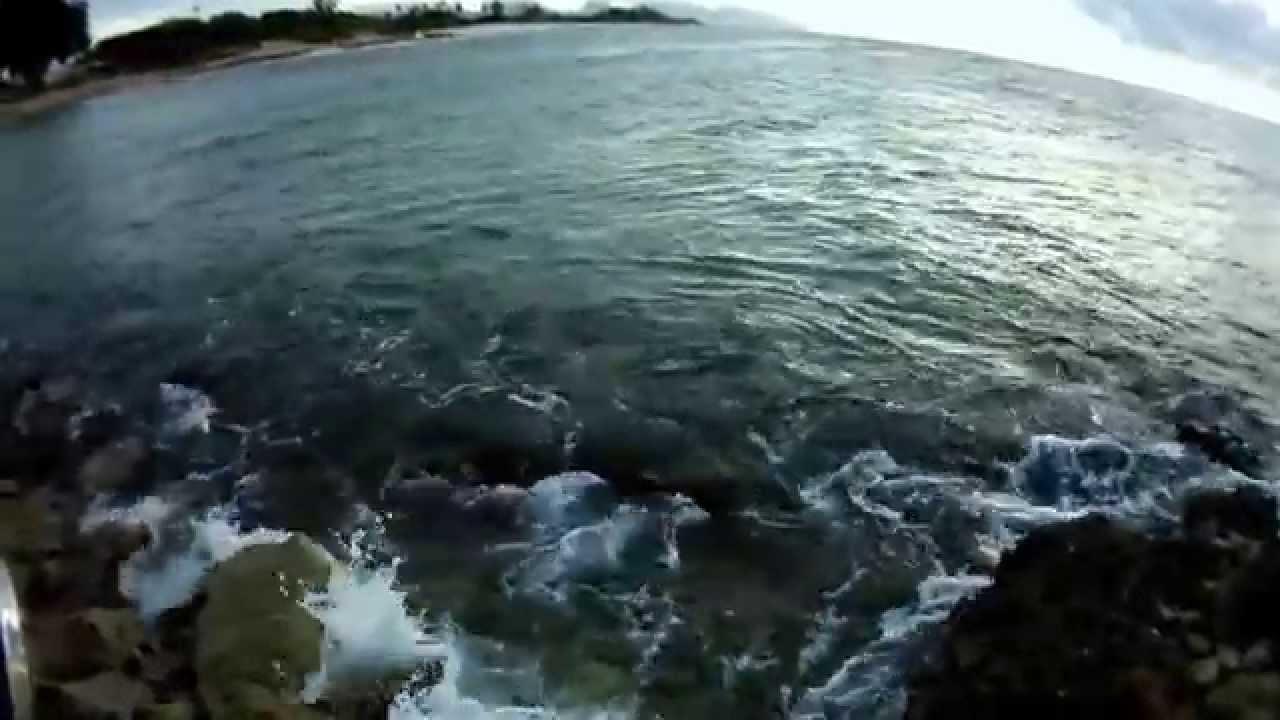 hawaii hookups